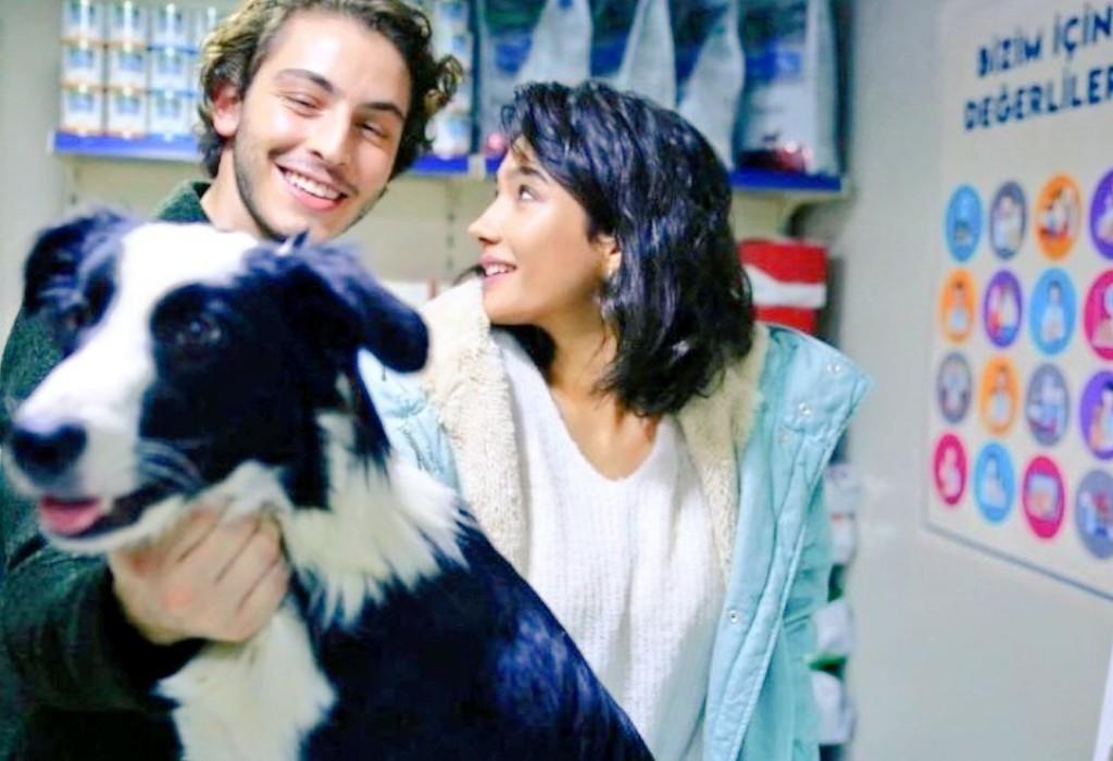 Boran Kuzum and Aybüke Pusat will attract attention to street animals.