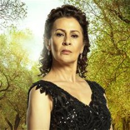 Gonca Cilasun as Halise Efeoğlu