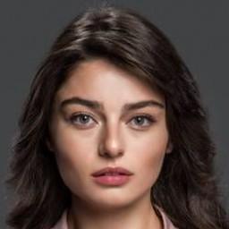 Ayça Ayşin Turan as Meryem Akça